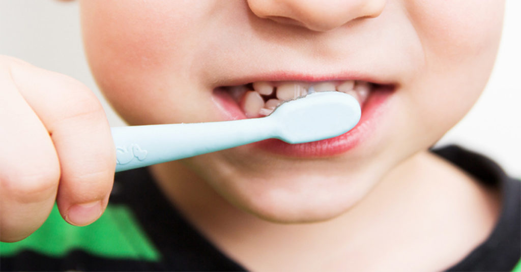 แปลงสีฟันไฟฟ้า Quip