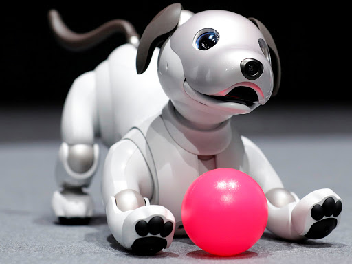 AI Aibo หุ่นยนต์สุนัข -จาก Sony