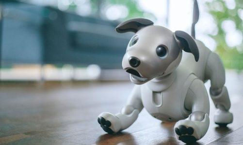AI Aibo หุ่นยนต์สุนัข แสนรู้ แก้เหงาจาก Sony สร้างความสุข และความอบอุ่นภายในบ้านได้