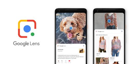 Google Lens แอพพลิเคชั่นสำหรับการวิเคราะห์