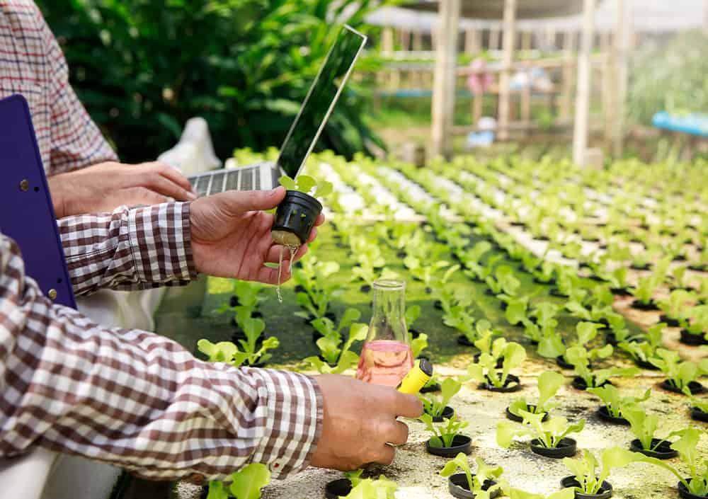 ข้อดีของ Smart Farm สามารถช่วยลดในการทำงาน