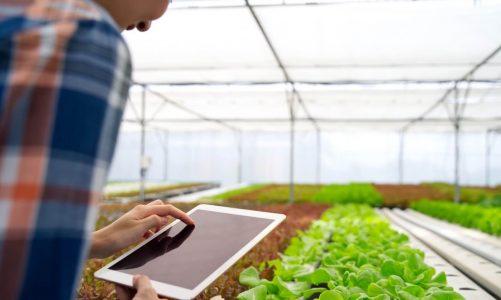 ข้อดีของ Smart Farm ต้องบอกเลยว่าเกี่ยวกับการเกษตรที่สายเทคโนโลยีห้ามพลาด